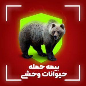 بیمه حمله حیوانات
